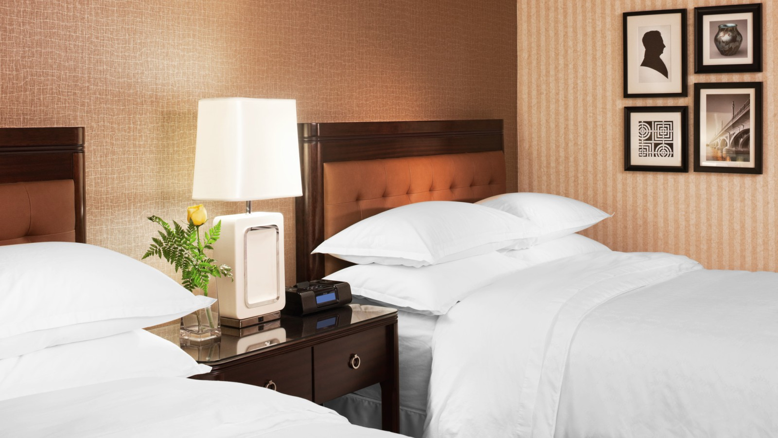 Traditional Rooms | Sheraton Detroit Metro Airport Hotel